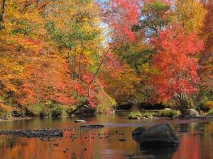 Fall in Peterborough, NH
