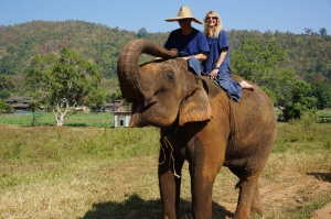 Ran-Tong Elephant Save & Rescue Center